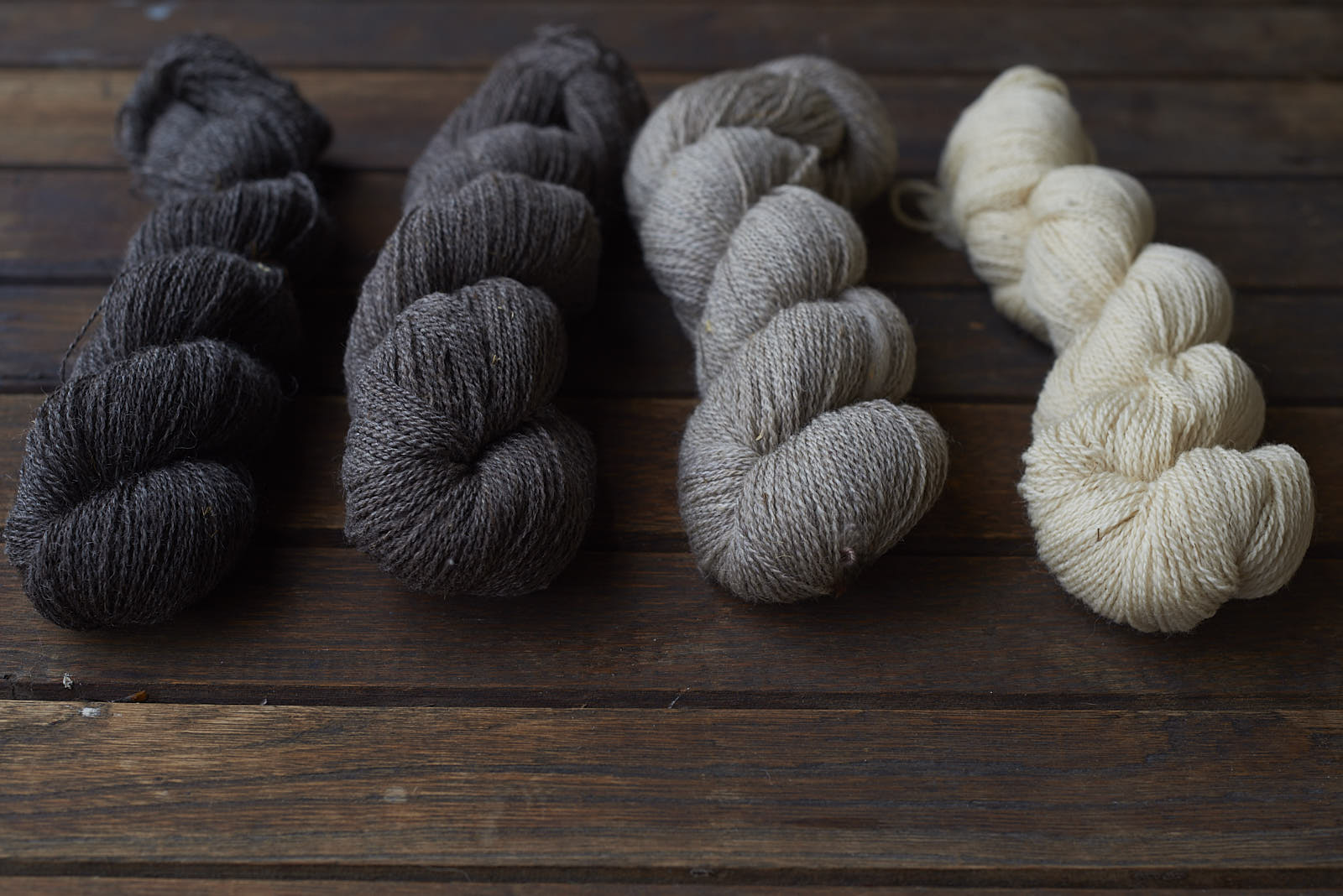Persephone in it's many natural shades. We're dyeing over all of these to create a rich and complex palette!