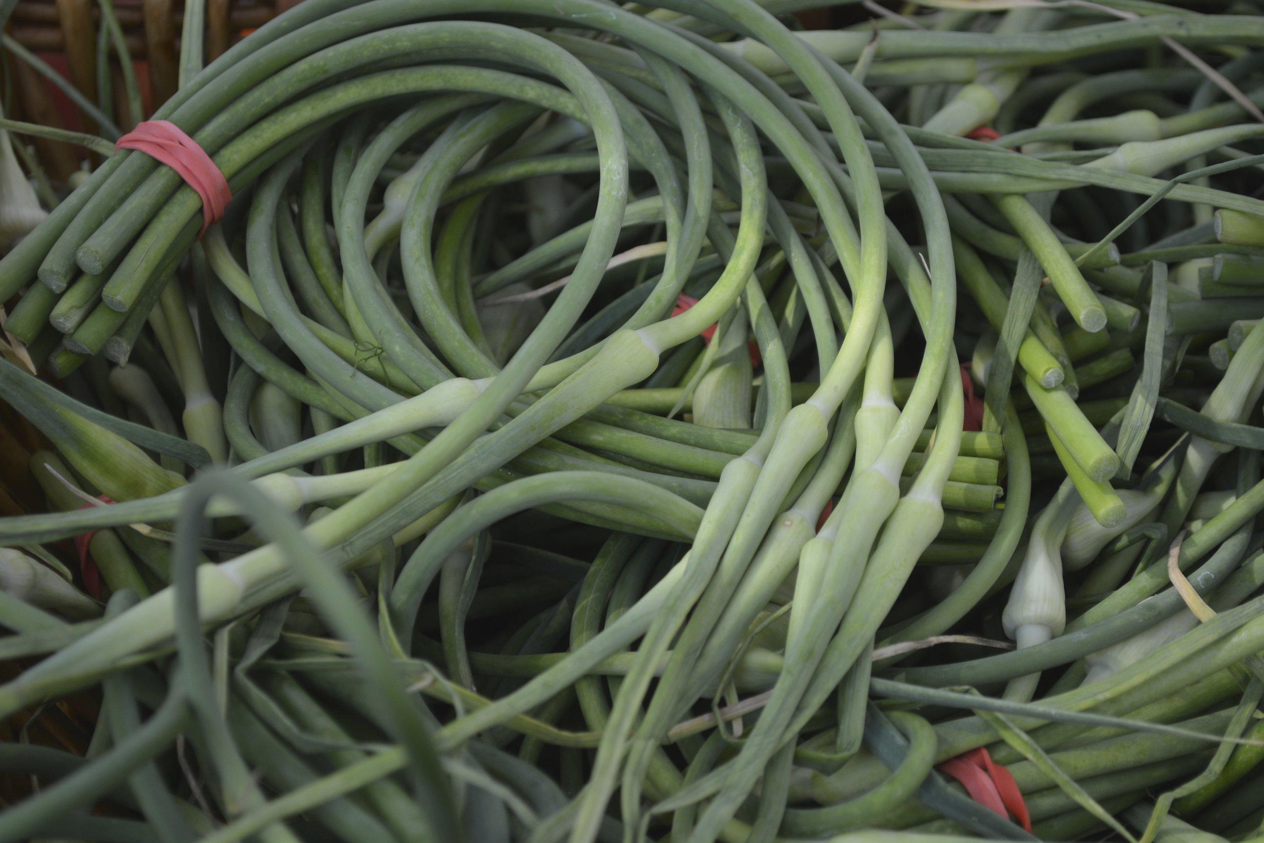 green onion.jpg