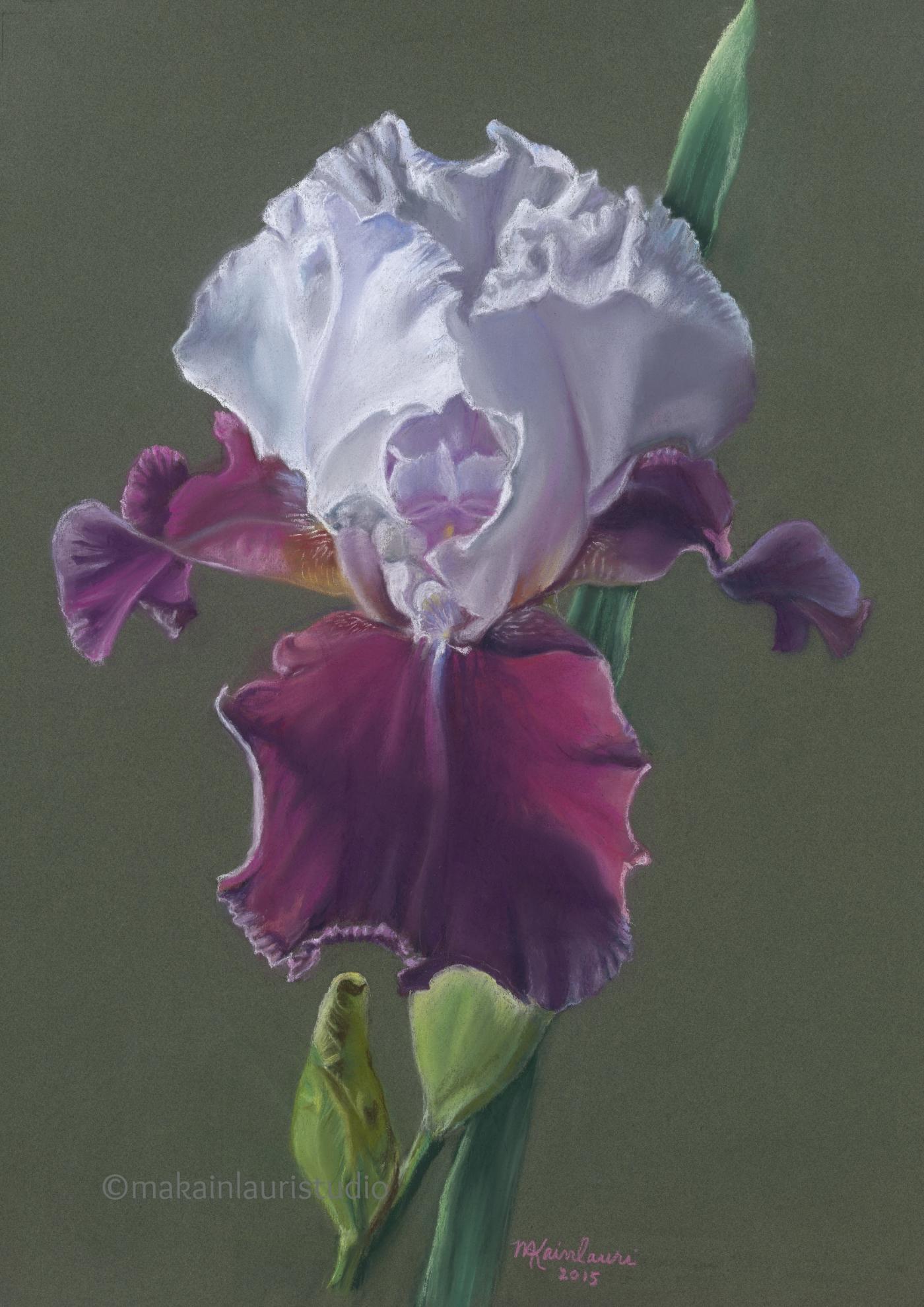 Purple and White Delight