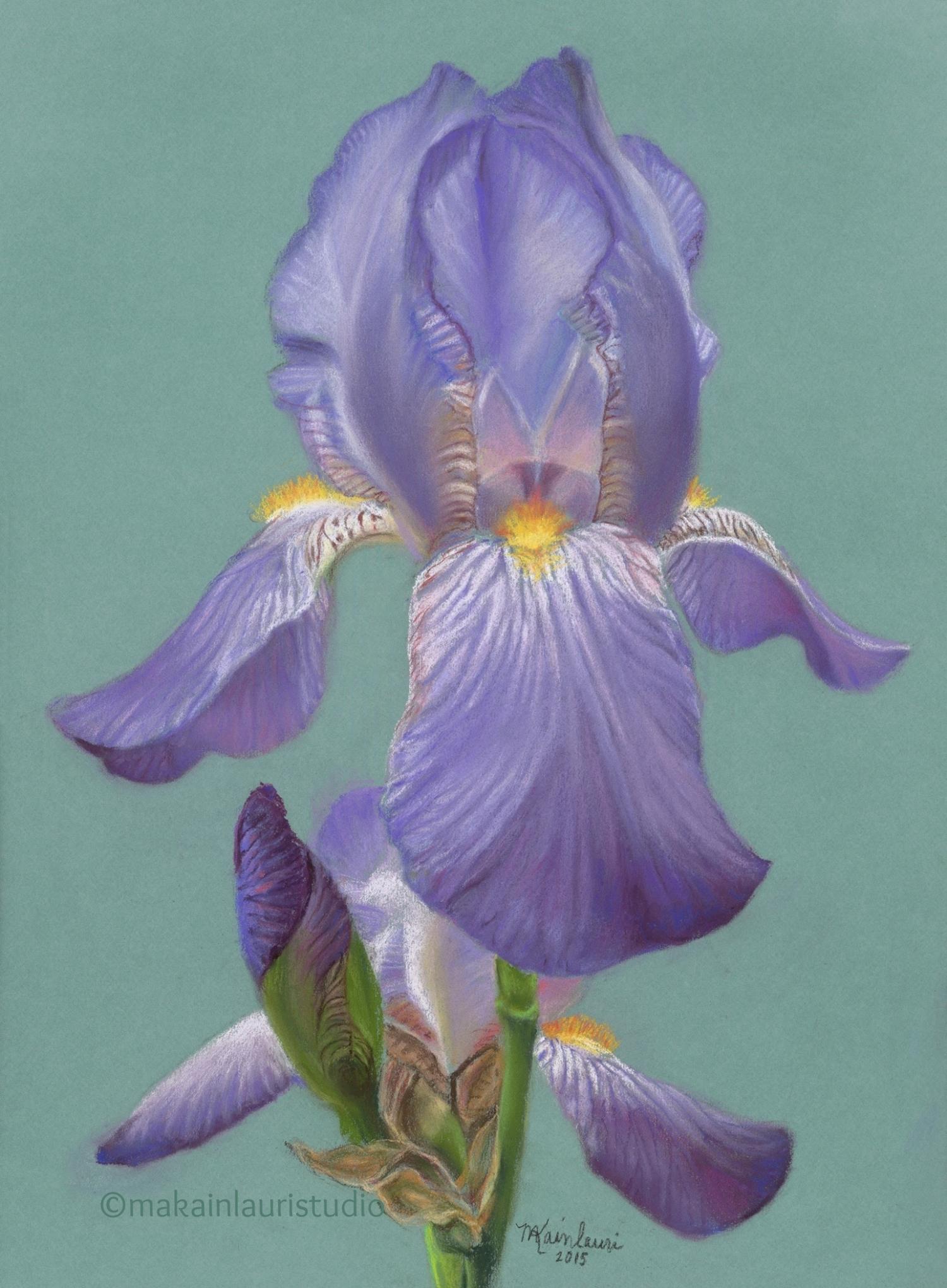 Lavender Elegance.jpg