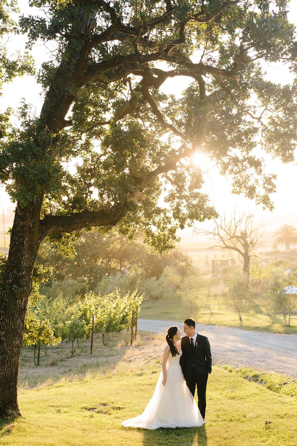 Simone-Anne-Wan-Mariola-Scribe-Winery-Wedding-Sneak-Peek-18.jpg