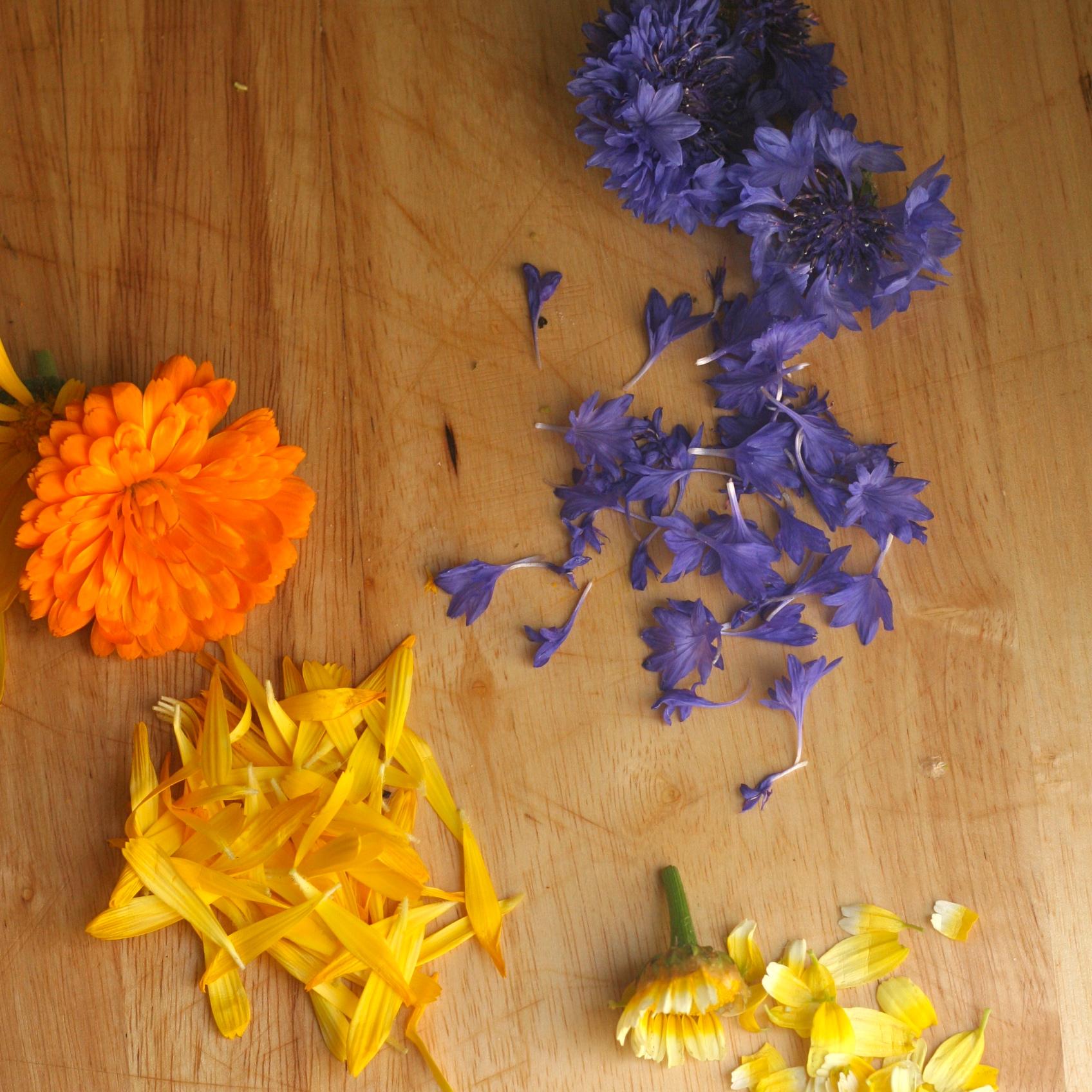 Edible flower petals - Calendula and Cornflower for pressed flower cake