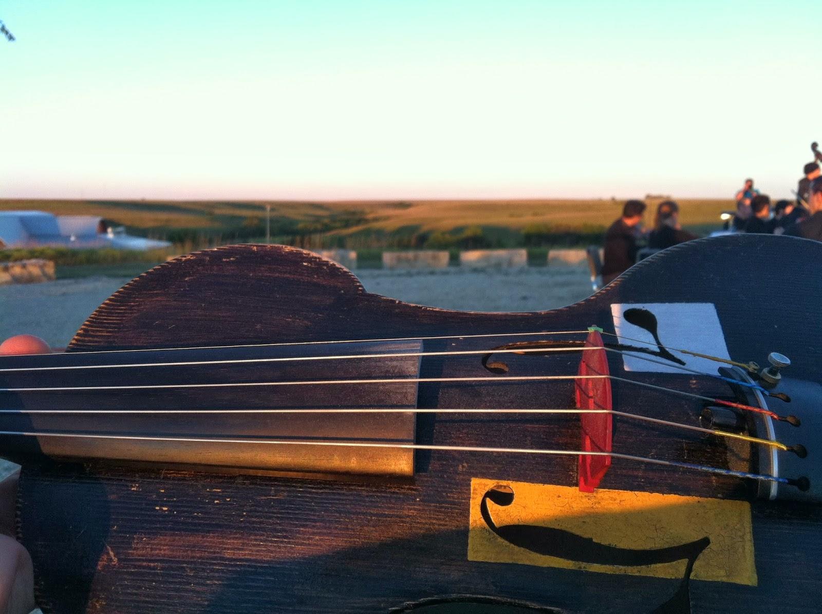 Darol's fiddle.jpg