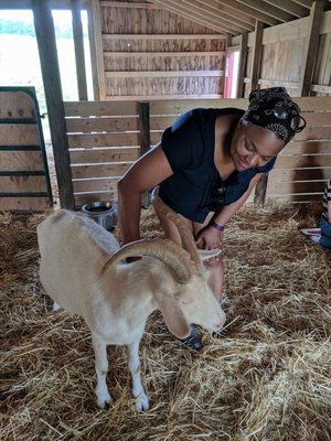 "Michelle hanging with a rescued goat at the famous ""Farm Sanctuary"" in Watkins Glen, NY."
