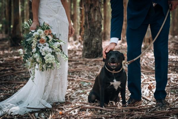 028-elegant-wedding-at-wills-domain-winery-by-freedom-garvey-warr-600x400.jpg