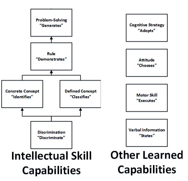 Figure 1 Nine Human Capabilities 1.png