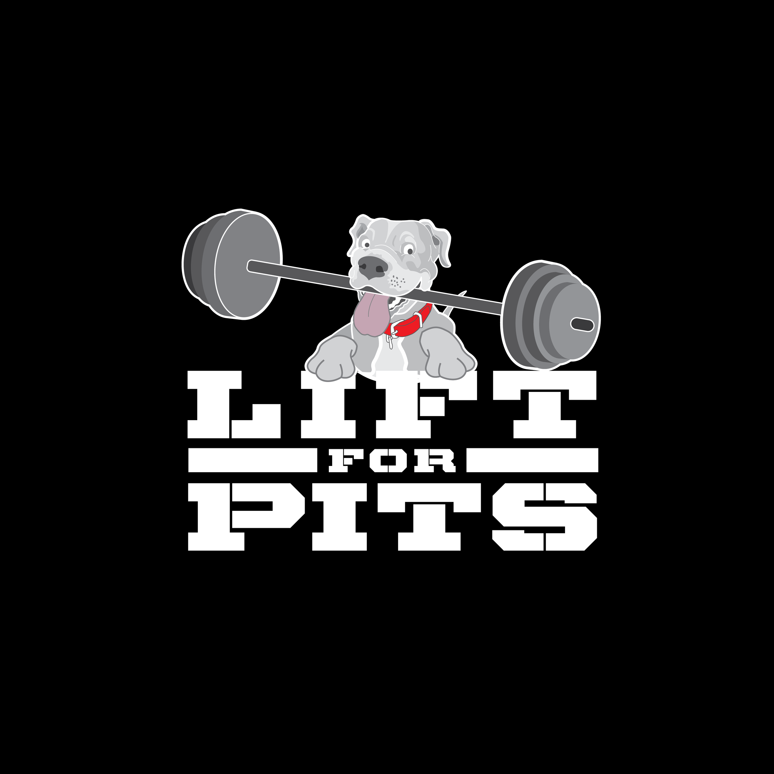 LIFT4pits_v2-01.png