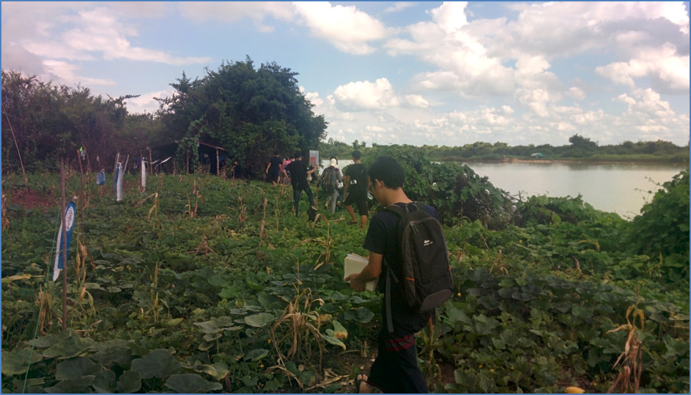 Water melon production in wetlands alongside the reservoir (Credit: Carl Middleton)