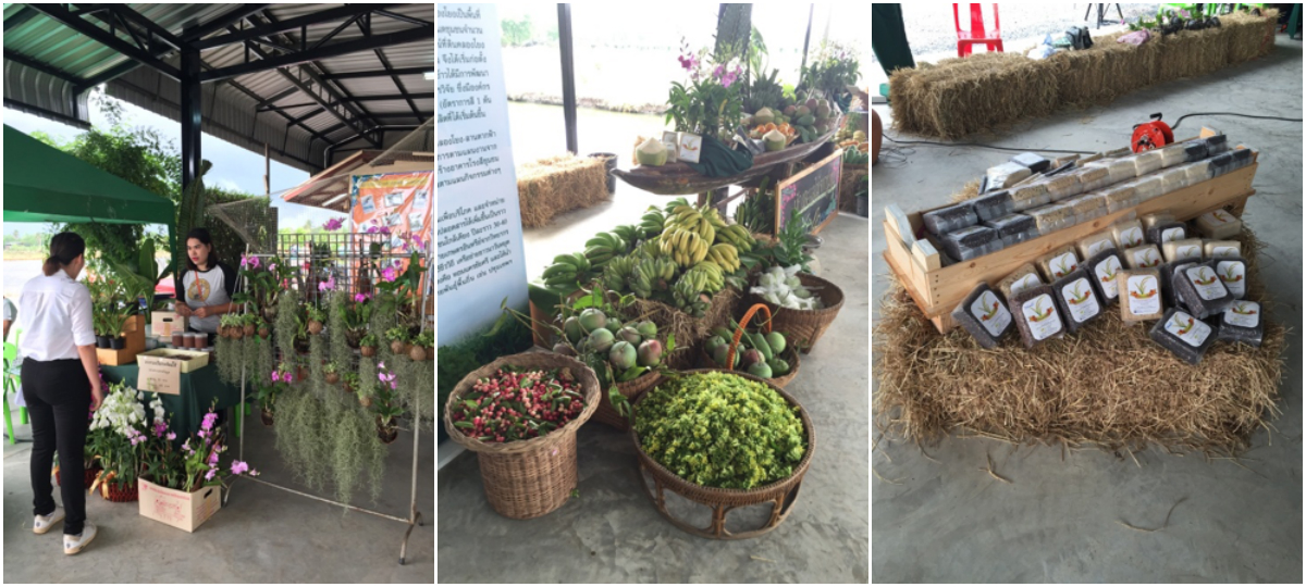Fresh and organic produce on sale from the farming community