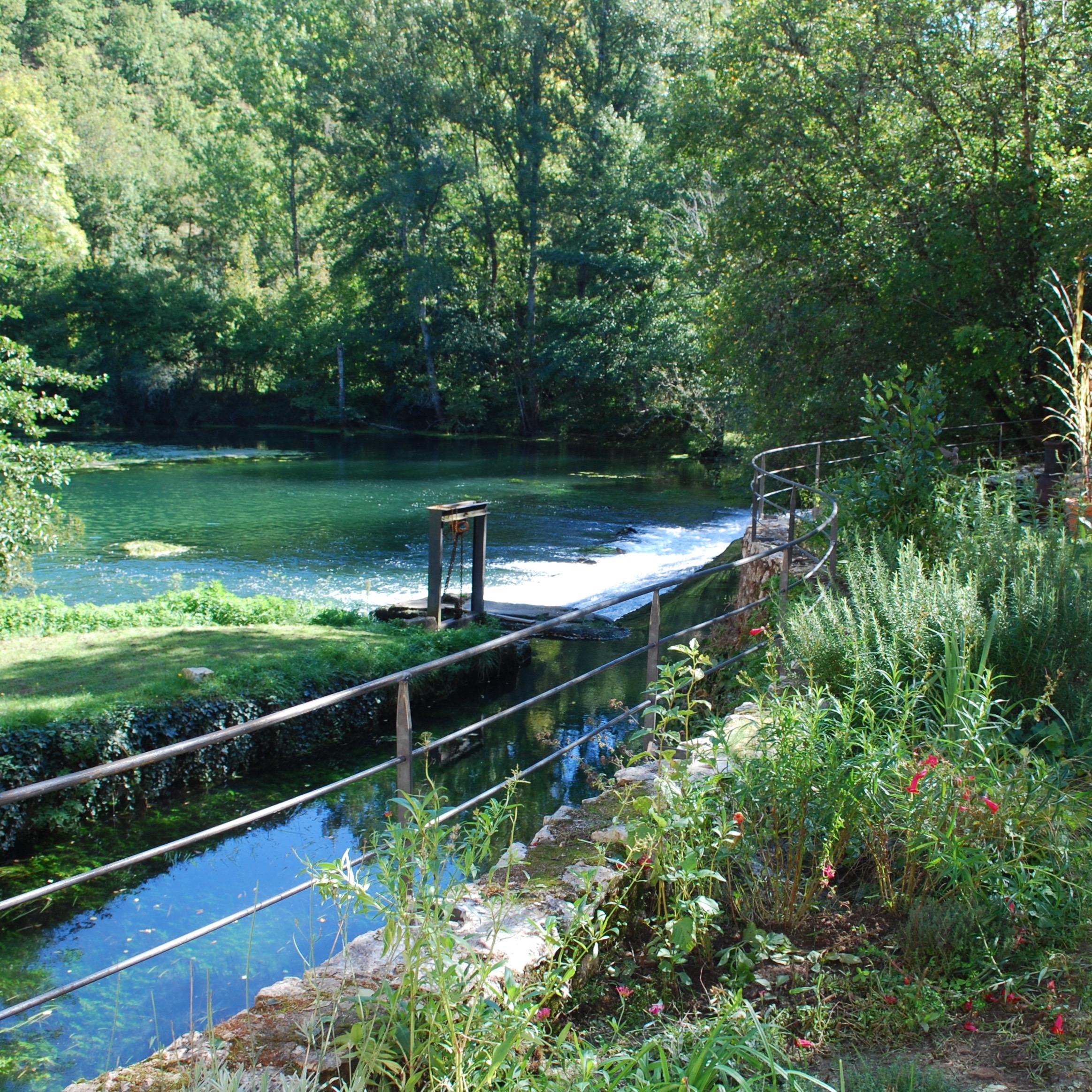 Waterside Railings