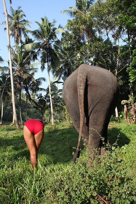 IMG_9091annelievandendaelsrilanka.jpg