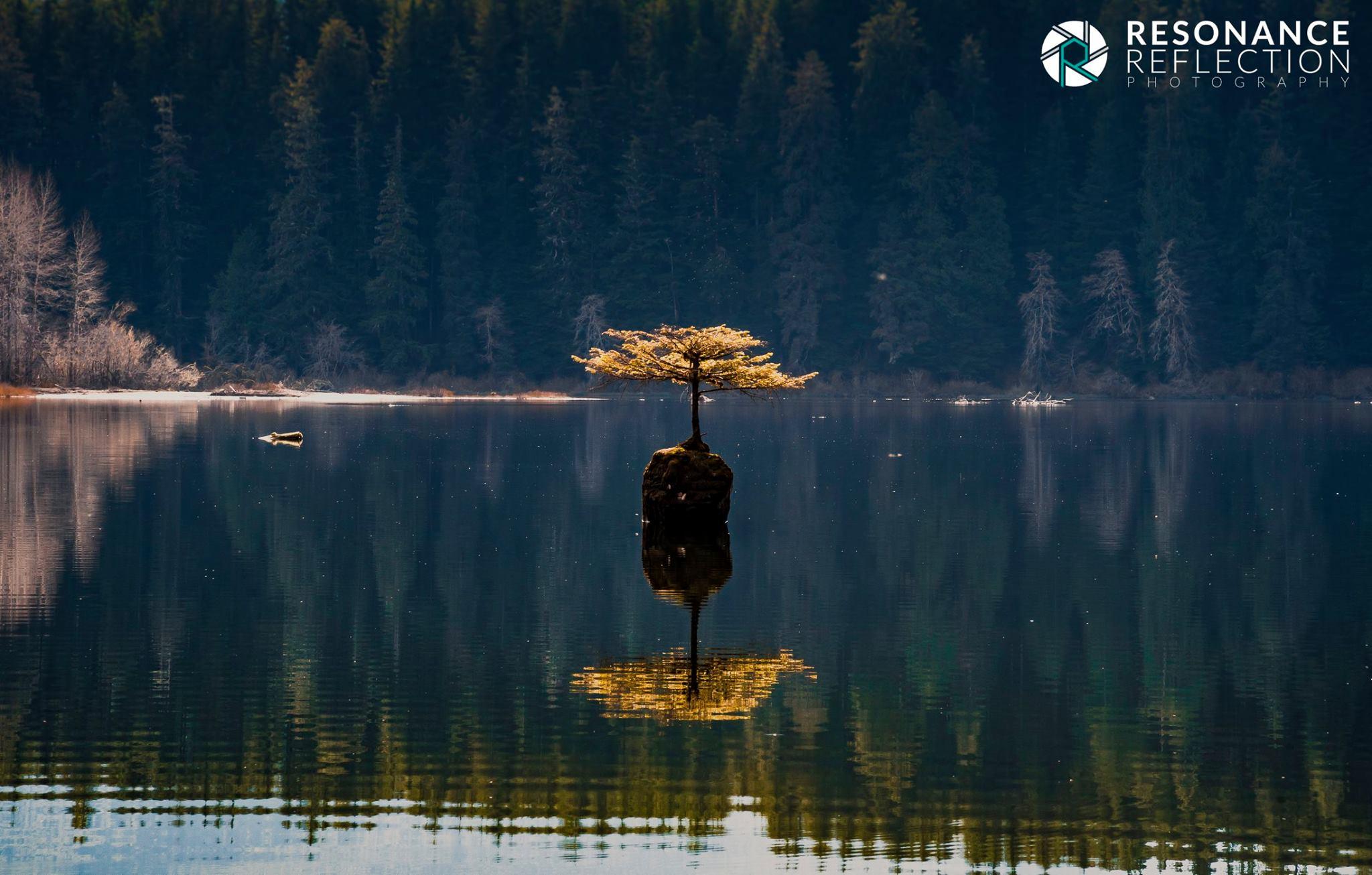 fairy lake.jpg