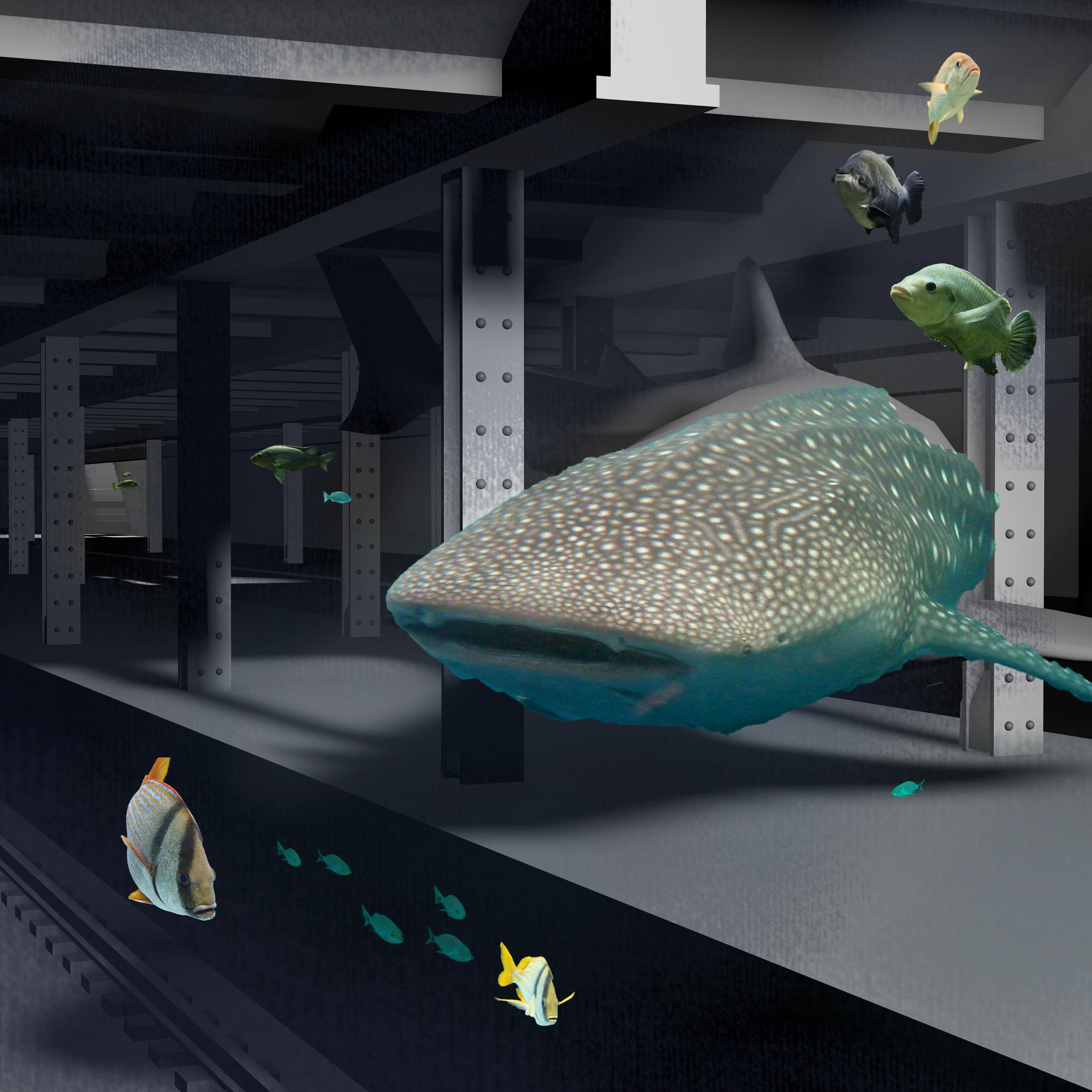 reef-in_progress-C.jpg