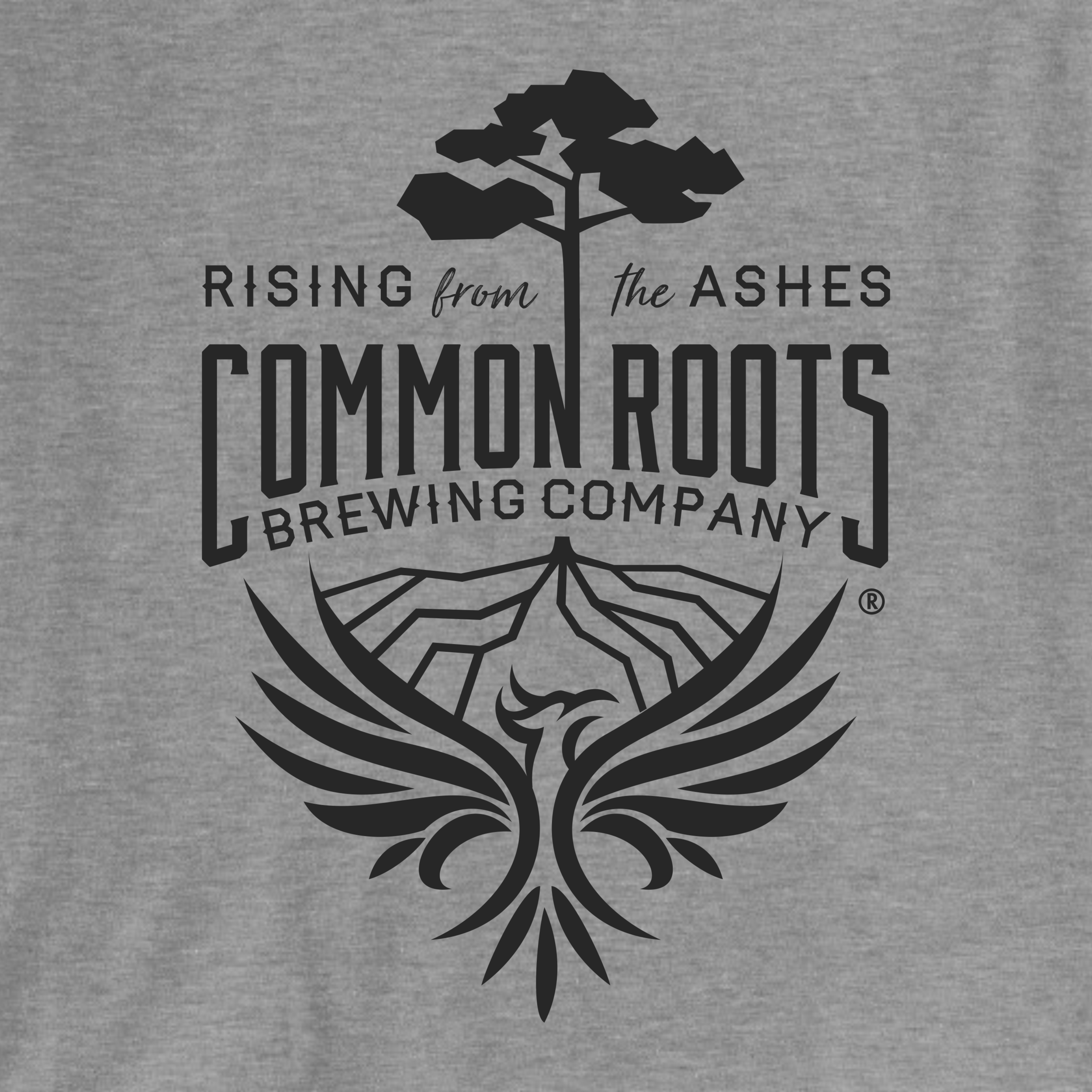 Help Common Roots Fundraiser