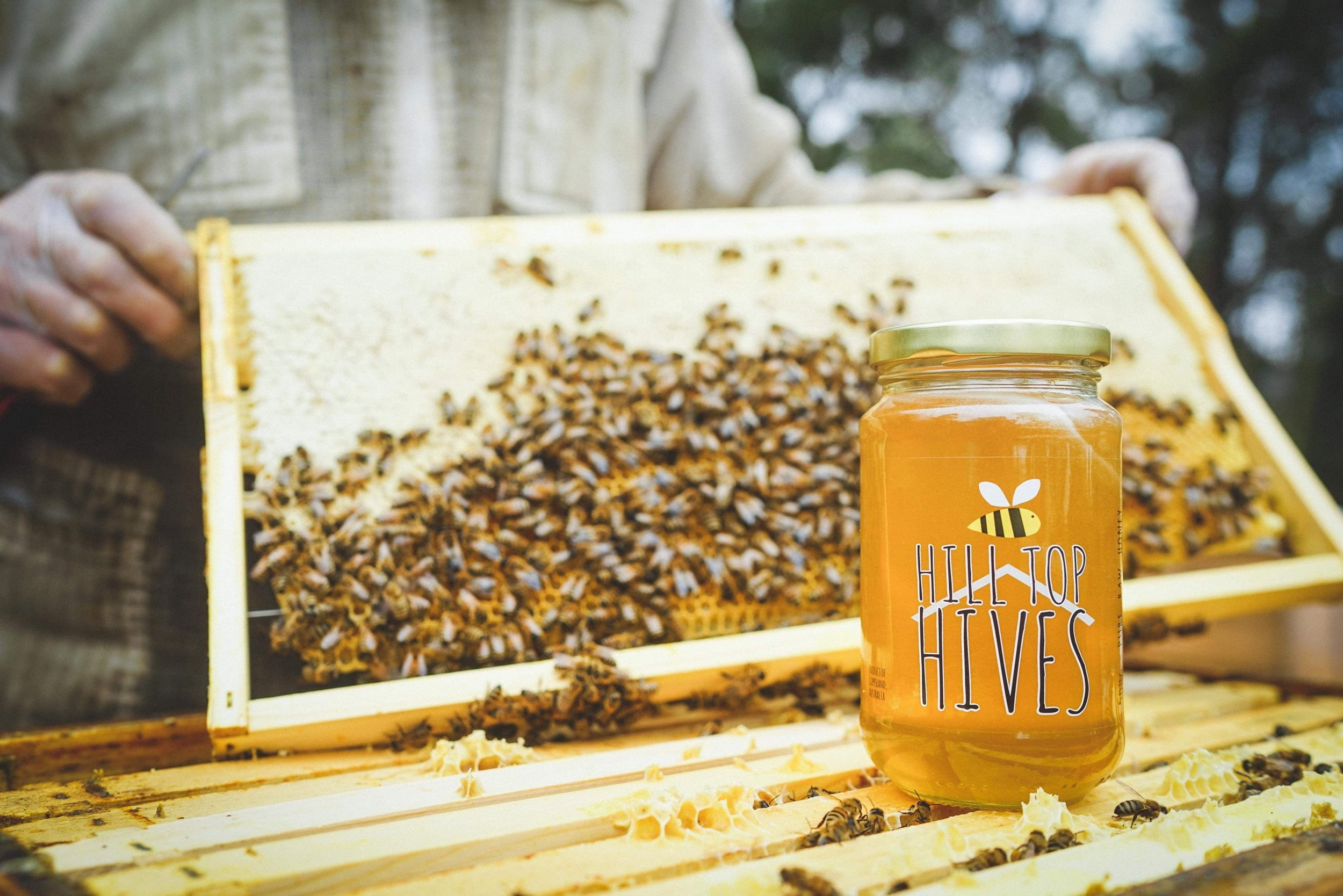 Welcome to Hill Top Hives, producers of pure, raw honey and beeswax products, located in the stunning South Gippsland countryside in Victoria, Australia. -