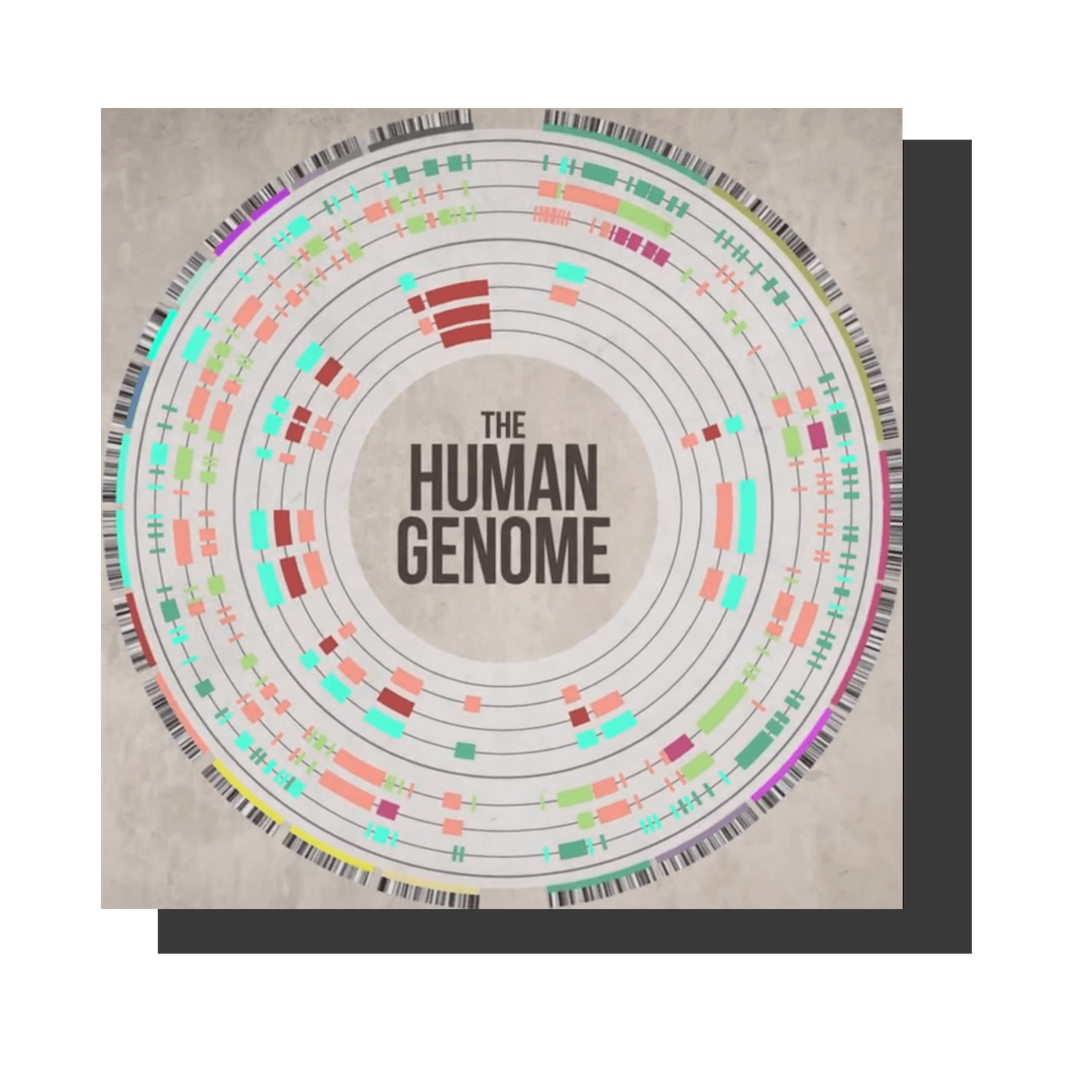 2000 - The Economic Genome - In 2000, Craig Venter mapped the human genome - all 4 billion combinations of 4 basic chemicals - Adenine, Thymine, Guanine, and Cytosine.I thought - is there a parallel between the human and economic genome? Was there an economic genome with an equally simple equation - e.g. a limited number of factors that like the human genome combine in 4 billion different ways in organizations to create value?In 2000, the same year that Craig published his findings, I wrote my first book - Cracking the Value Code - and published my first patent on the economic genome.