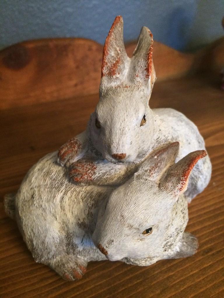 Rabbits hopping on Sarah's bed.