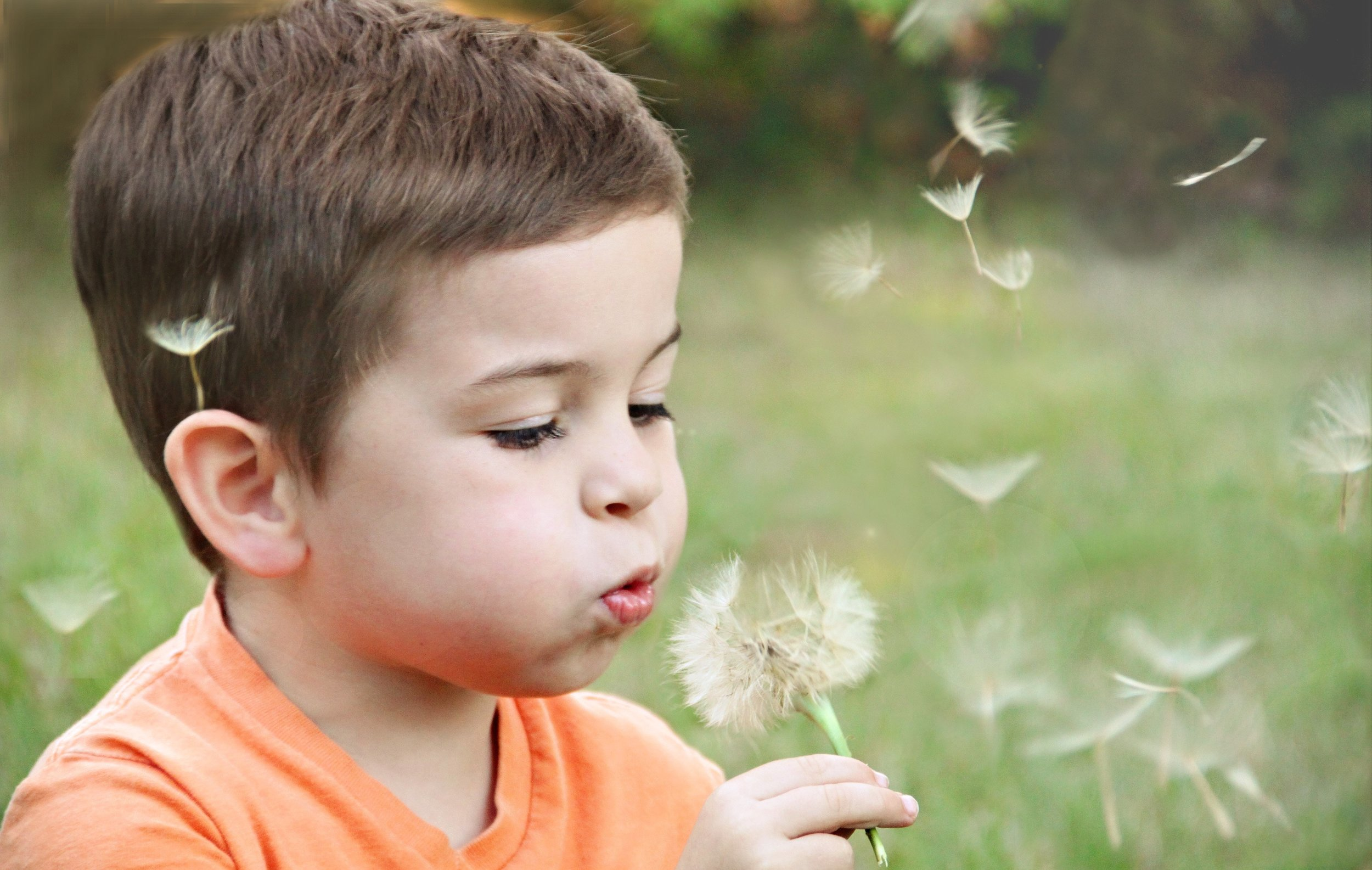blowing-blurred-background-boy-1231215.jpg
