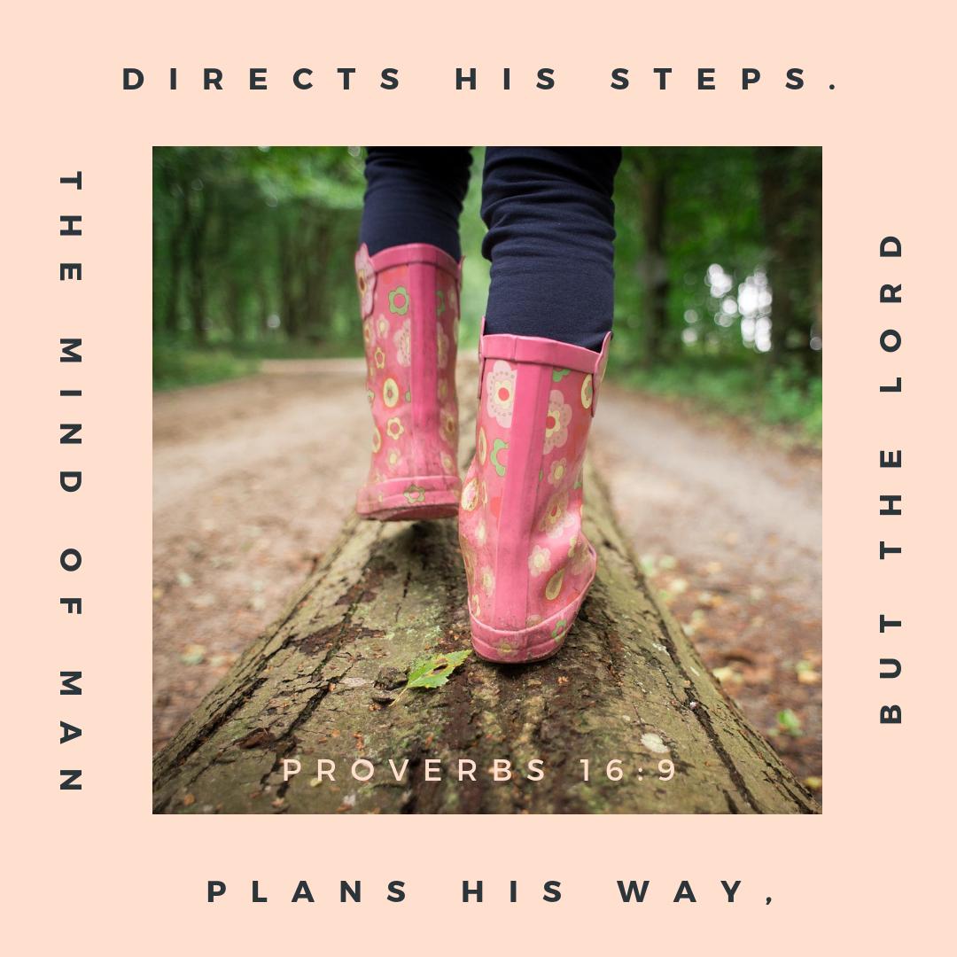 SC Proverbs 16_9.png