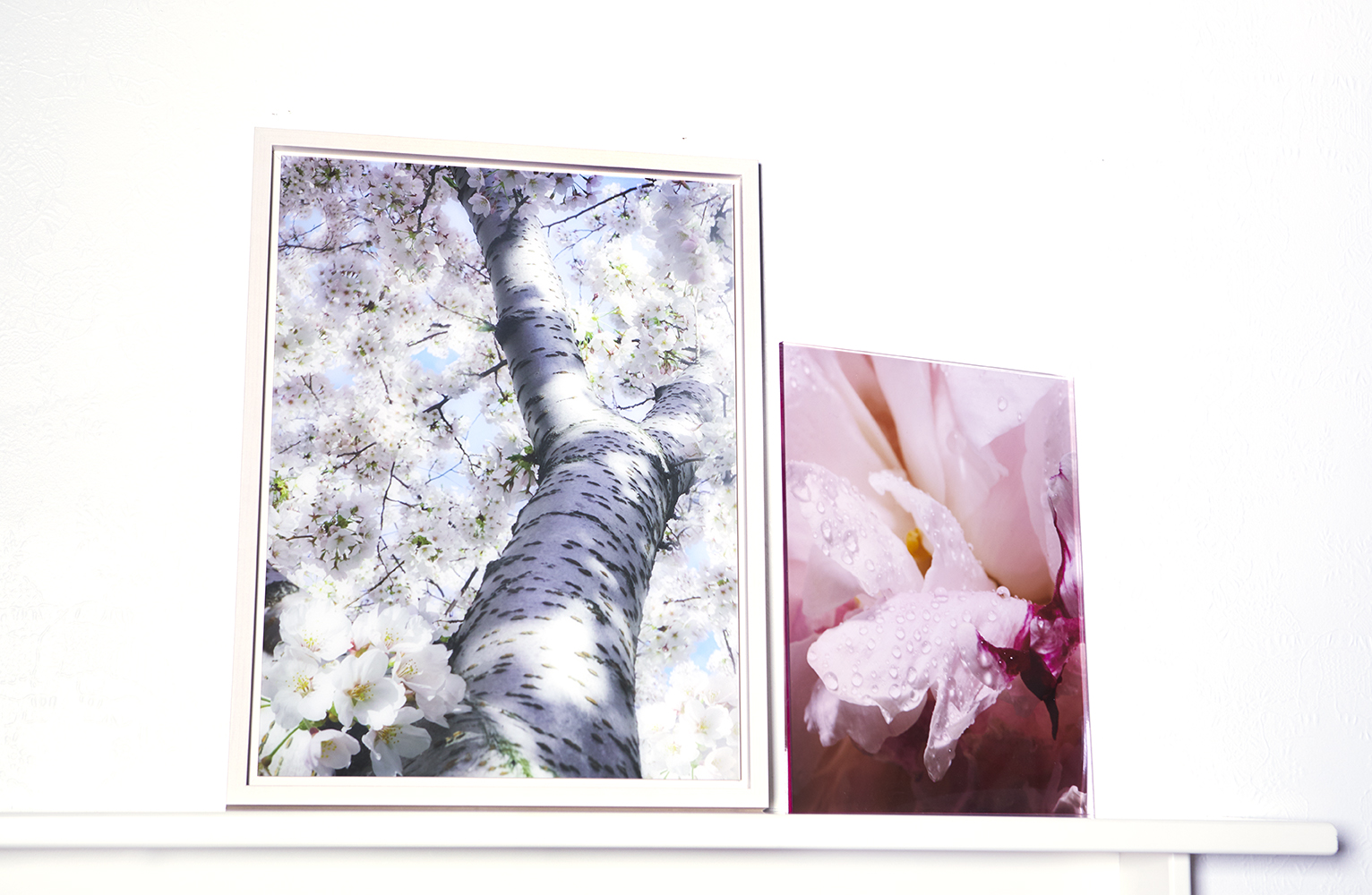 Photograph under Acrylic Glass with Floater Frame, 16.7 x 21.7 (Left)   Photograph under Pink Plexi, 11 x 14 (Right)