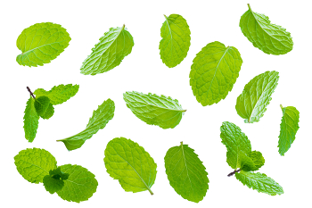 Mint - A great cleanser for the liver and blood and is a well-known digestive aid. Naturally stimulating, mint can improve cognitive function.