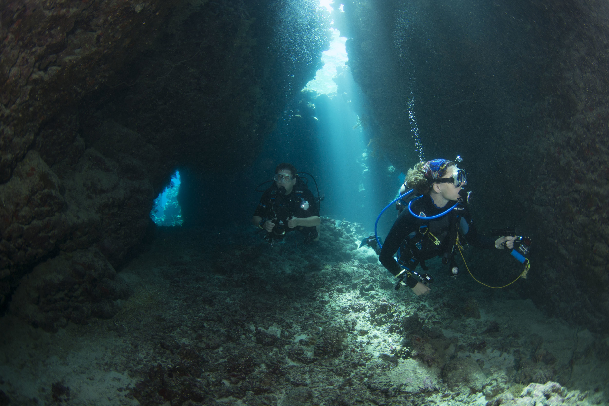 Divers through St Johns Woods