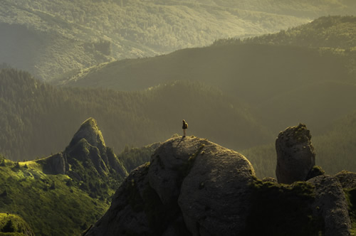 man on a rock overlooking valley