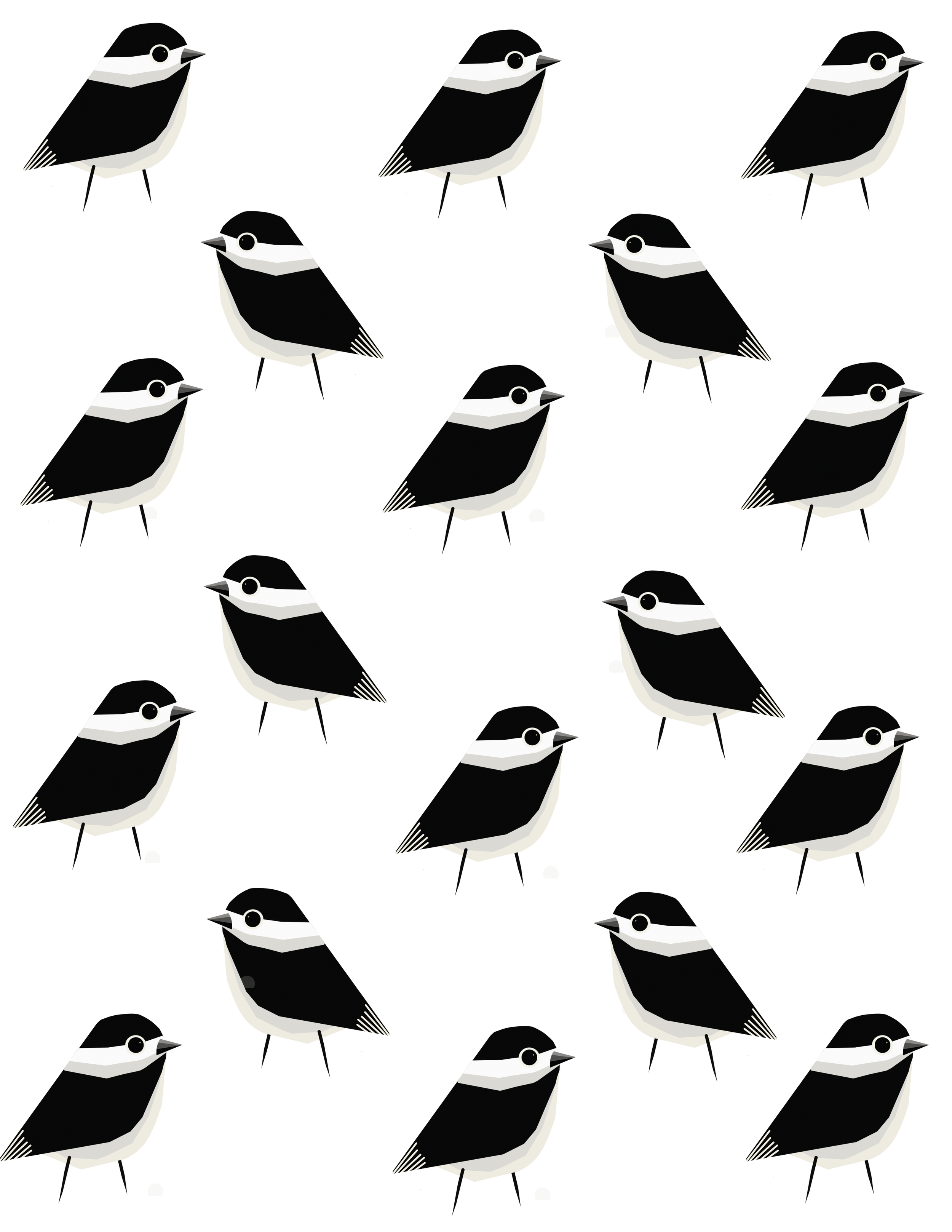 CHICKADEE PATTERN.png