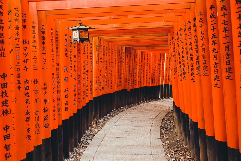 Wuz_newwebsite_cityscape_28.JPG