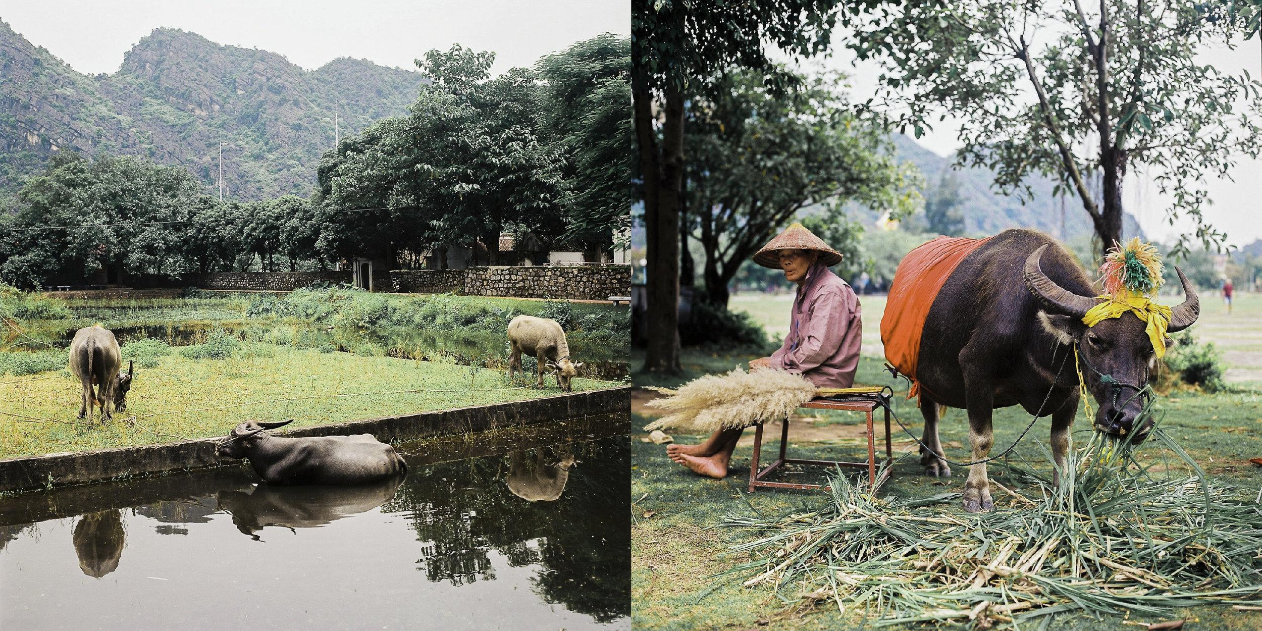越南_layout-16.jpg