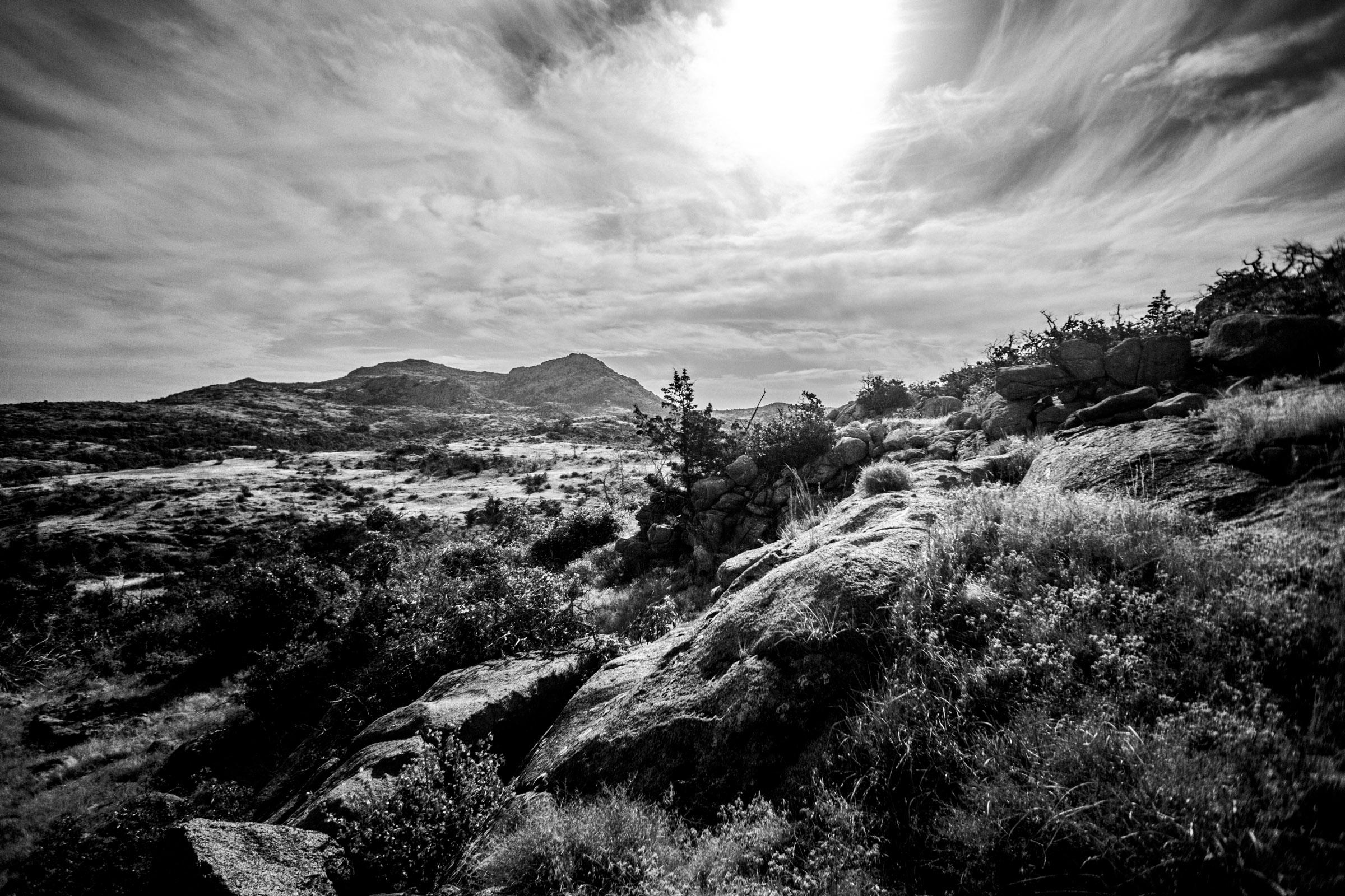 Mount Mitchell B&W 08-07-16 (15 of 35).jpg