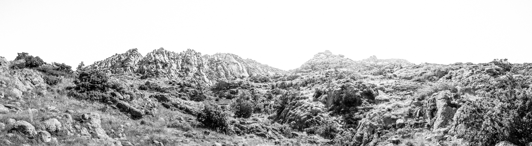 2017-06-25 Mount Lincoln B (3 of 20).jpg