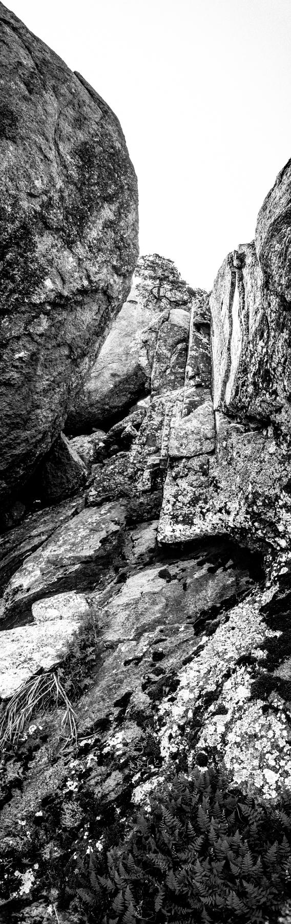 2017-06-25 Mount Lincoln B (5 of 20).jpg