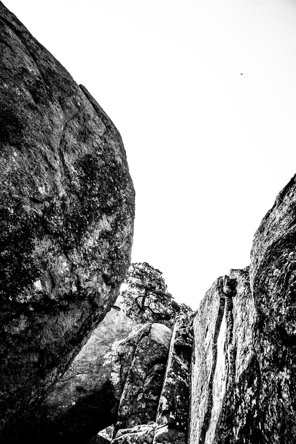 2017-06-25 Mount Lincoln B (4 of 20).jpg