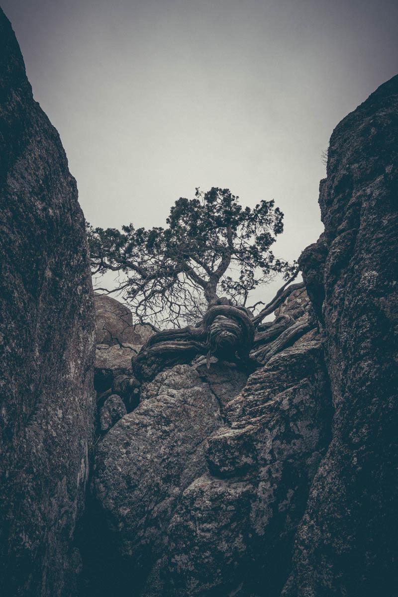 toddeclark-nature-adventure-mountains-mountain-outdoors-hike-wanderlust-beautiful-naturelovers-love-view-outdoor-neverstopexploring-backpacking-climbing-wilderness-optoutside-keepitwild-22.jpg