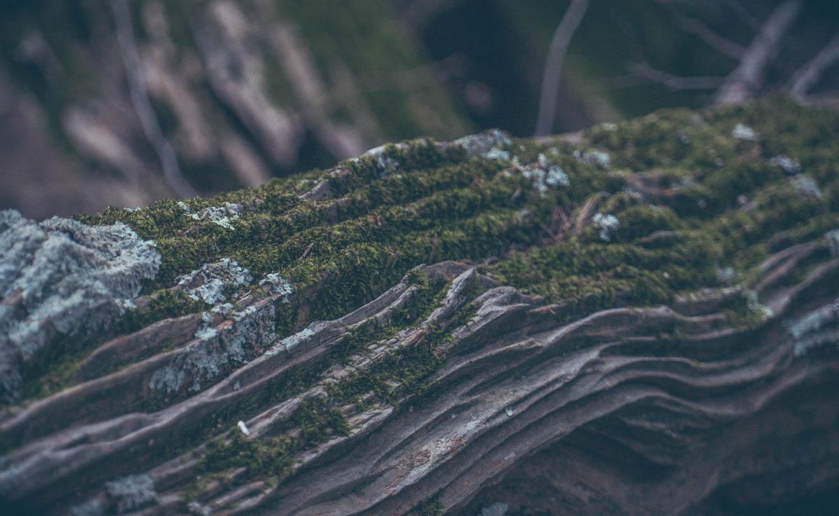 toddeclark-nature-adventure-mountains-mountain-outdoors-hike-wanderlust-beautiful-naturelovers-love-view-outdoor-neverstopexploring-backpacking-climbing-wilderness-optoutside-keepitwild-28.jpg