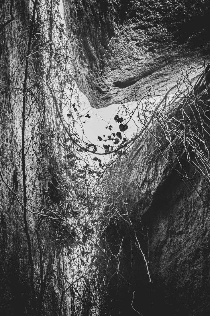 Best-of-2017-black-and-white-48.jpg