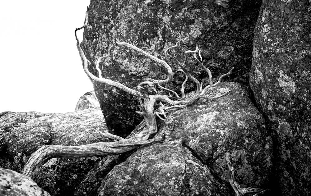 womenwhohike-toddeclark-nature-adventure-mountains-mountain-outdoors-hike-wanderlust-beautiful-naturelovers-love-view-outdoor-neverstopexploring-backpacking-climbing-wilderness-optoutside-keepitwild-4.jpg