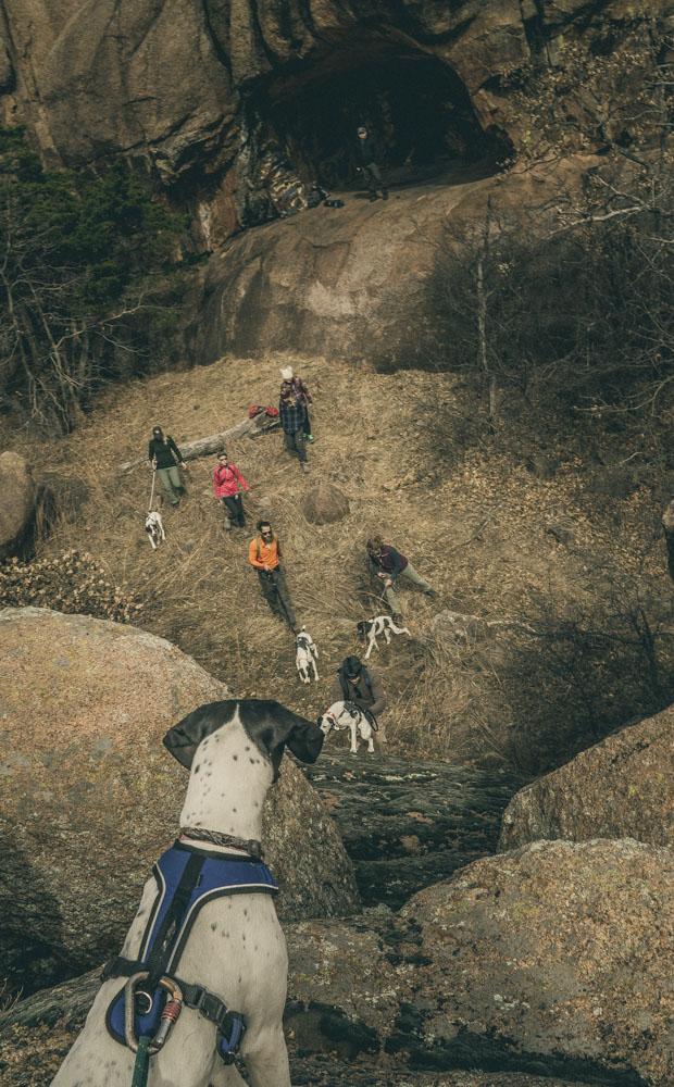 womenwhohike-dogshiking-toddeclark-nature-adventure-mountains-mountain-outdoors-hike-wanderlust-beautiful-naturelovers-love-view-outdoor-neverstopexploring-backpacking-climbing-wilderness-optoutside-keepitwild-12.jpg
