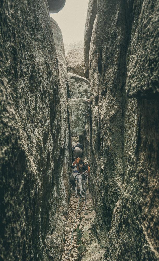 womenwhohike-dogshiking-toddeclark-nature-adventure-mountains-mountain-outdoors-hike-wanderlust-beautiful-naturelovers-love-view-outdoor-neverstopexploring-backpacking-climbing-wilderness-optoutside-keepitwild-16.jpg