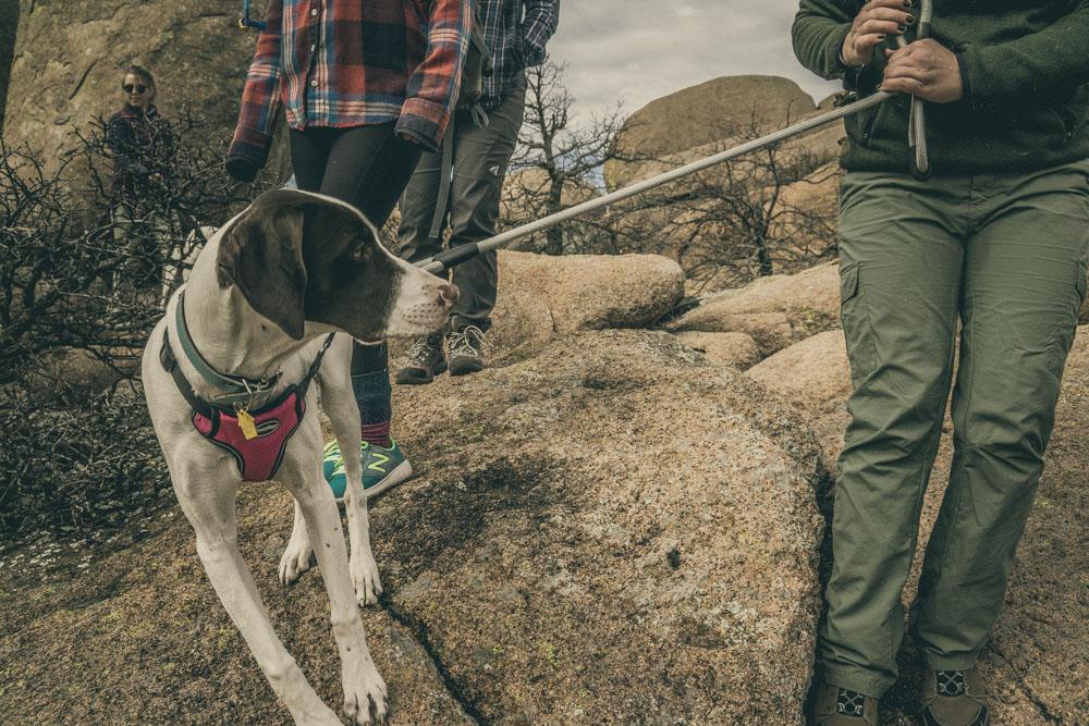 womenwhohike-dogshiking-toddeclark-nature-adventure-mountains-mountain-outdoors-hike-wanderlust-beautiful-naturelovers-love-view-outdoor-neverstopexploring-backpacking-climbing-wilderness-optoutside-keepitwild-31.jpg