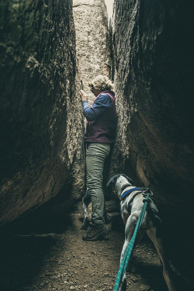 womenwhohike-dogshiking-toddeclark-nature-adventure-mountains-mountain-outdoors-hike-wanderlust-beautiful-naturelovers-love-view-outdoor-neverstopexploring-backpacking-climbing-wilderness-optoutside-keepitwild-36.jpg