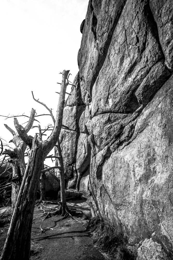 Womenwhoexplore-womenwhohike-dogshiking-dogswhohike-toddeclark-nature-adventure-mountains-mountain-outdoors-hike-wanderlust-beautiful-naturelovers-view-outdoor-neverstopexploring-backpacking-wilderness-optoutside-keepitwild-4.jpg