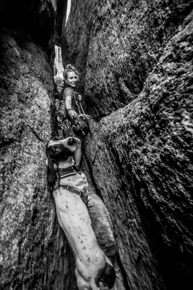 Womenwhoexplore-womenwhohike-dogshiking-dogswhohike-toddeclark-nature-adventure-mountains-mountain-outdoors-hike-wanderlust-beautiful-naturelovers-view-outdoor-neverstopexploring-backpacking-wilderness-optoutside-keepitwild-7.jpg