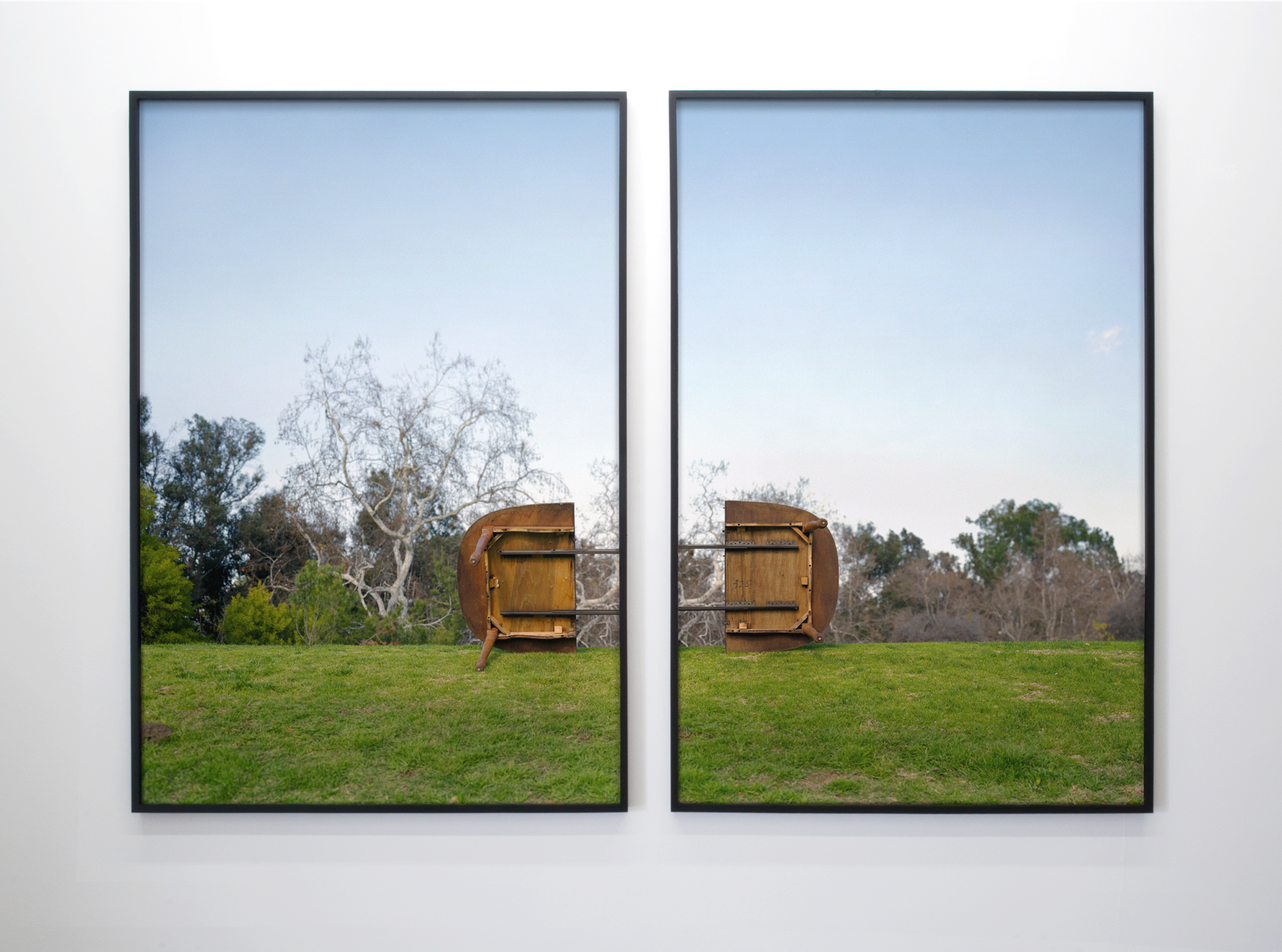Exuviation Consort 2008 two chromogenic prints on acrylic with lacquer and maple frames