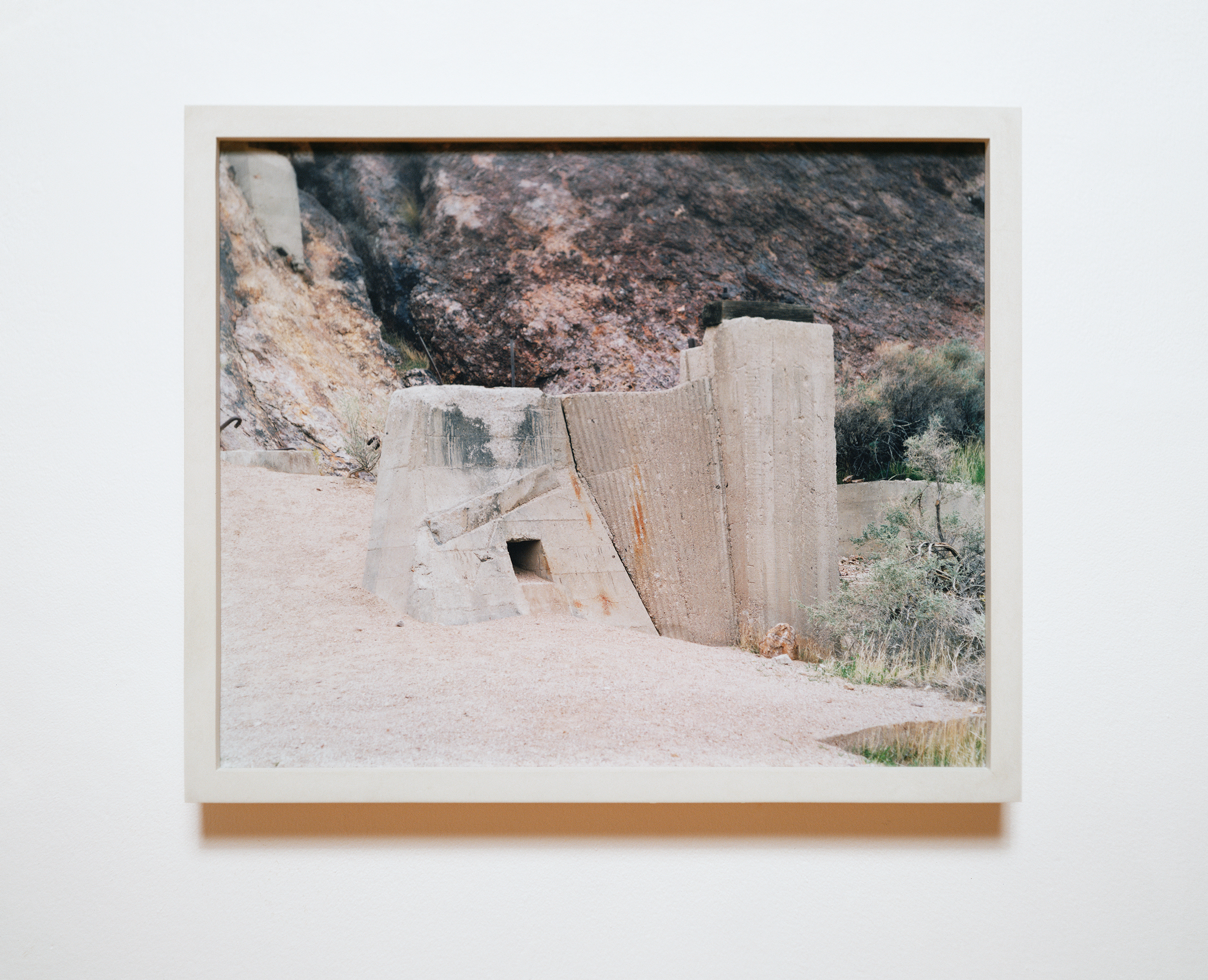 Recent Cures 2007 chromogenic print on acrylic with steel reinforced concrete frame