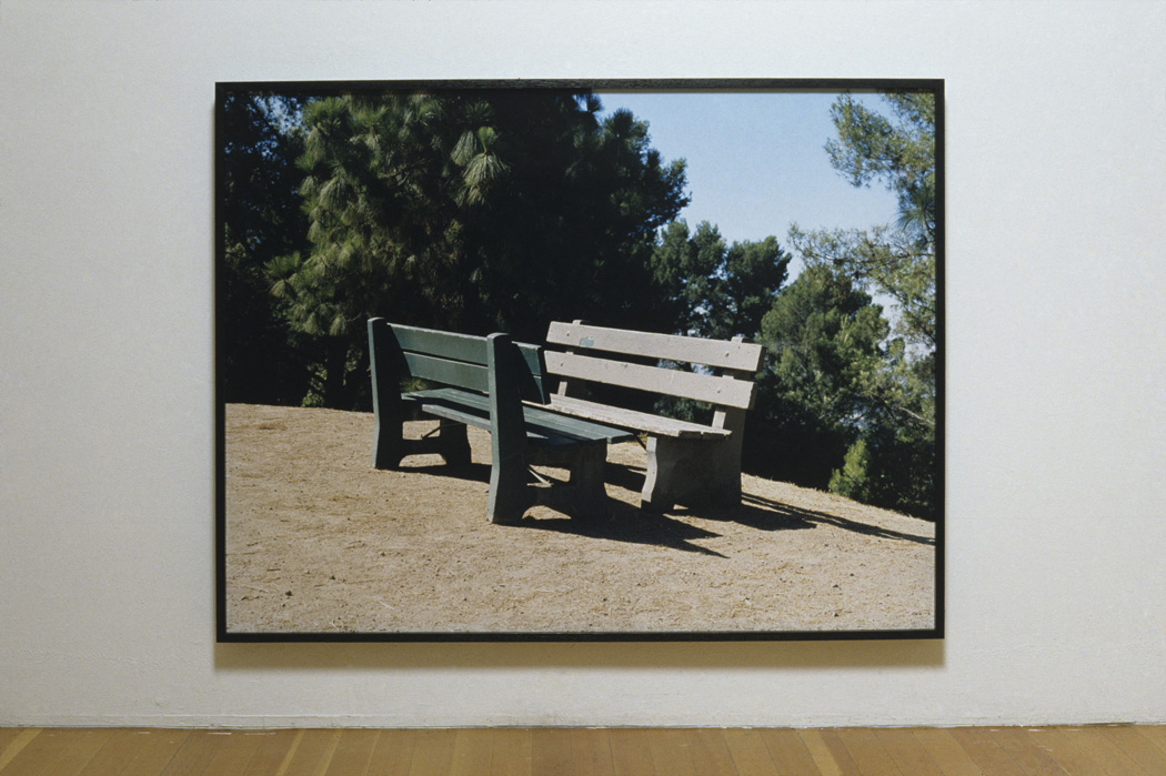 States United: Soft Shoulder/Split Vista (In Short and In Blue)  2007 chromogenic print on acrylic with oil stained oak frame