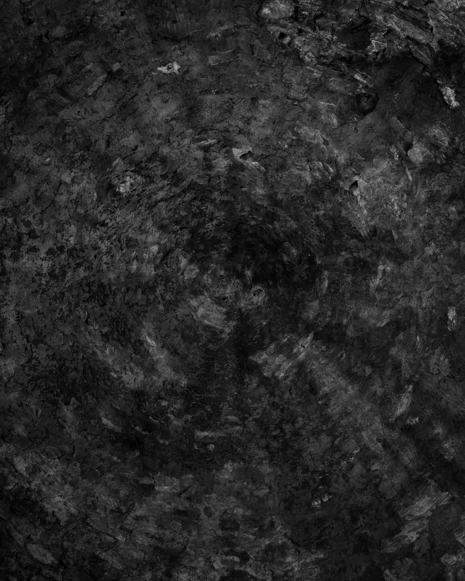 VII 2019 carbon inkjet print