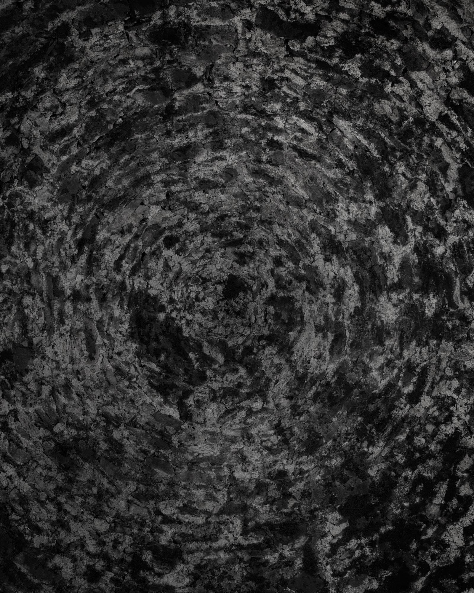 VIII 2019 carbon inkjet print