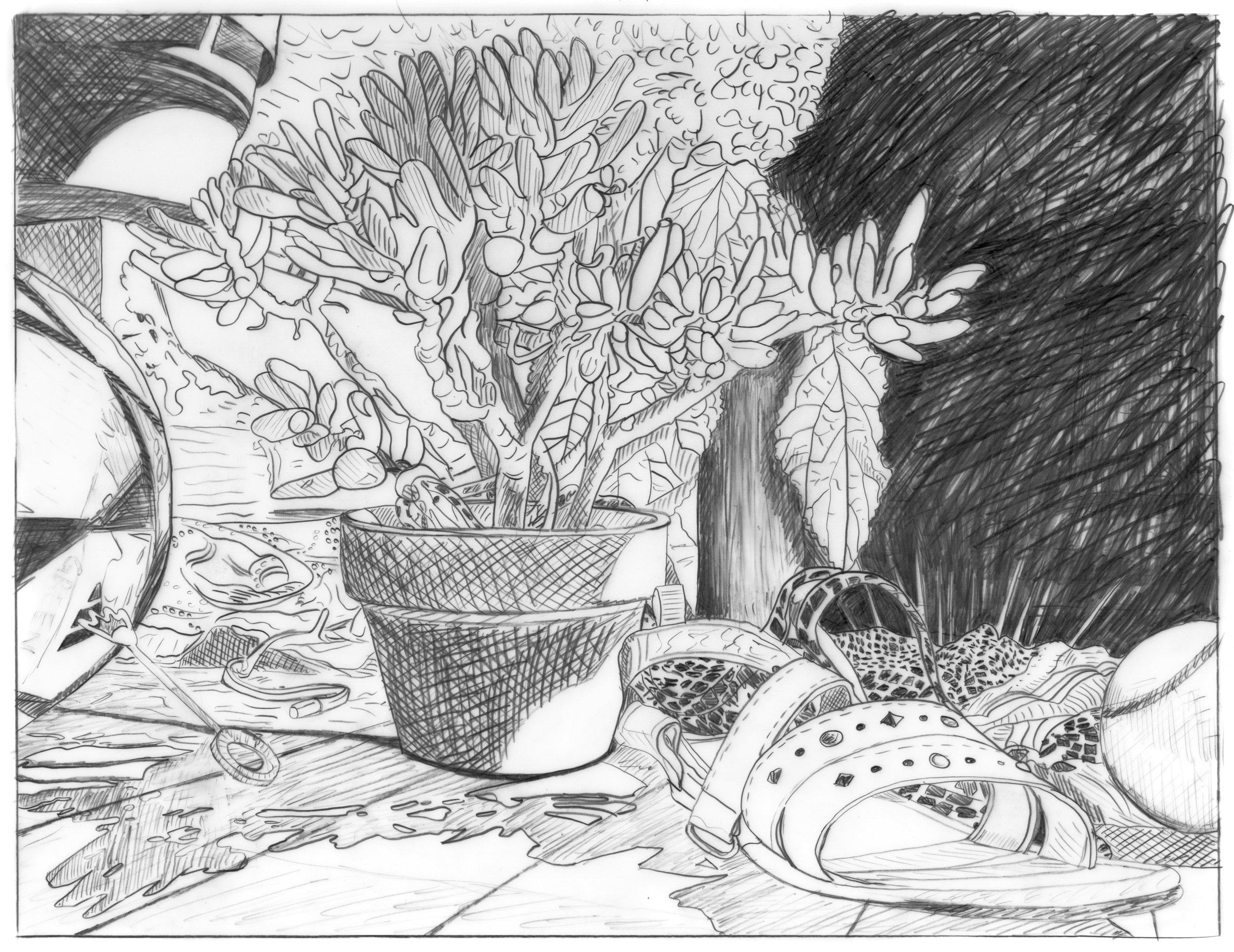 Succulent Southside/Domestic Bliss (graphite)